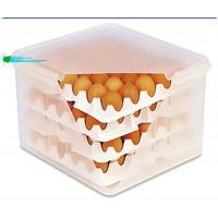 boîte à oeufs 2/3, 8 compartiments